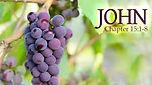 John15.1.8.jpg