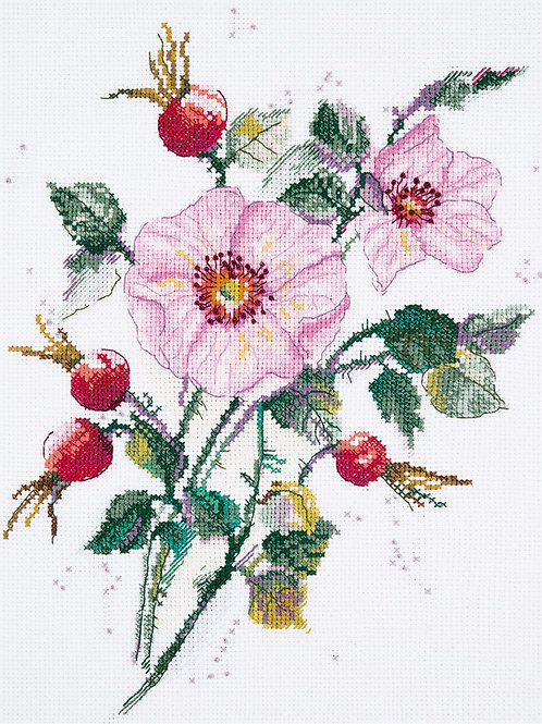 Wild Rose in May Cross Stitch
