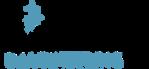 WDI Logo.png