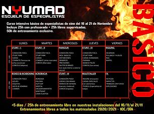 CURSO ANUAL NUEVO FORMATO BSC.png