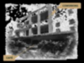 SEMILLA_WEB_a-07.png