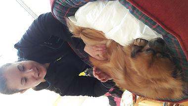ostéopathe chien canin ostéopathie