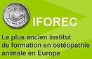 IFOREC
