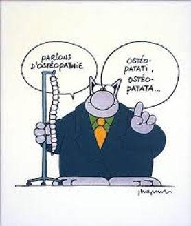 le chat geluck Candice BERNARD Ostéopathe Noirmoutier