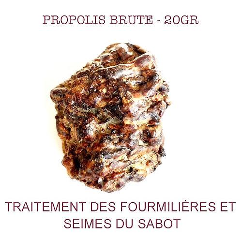 Propolis brute - 20gr