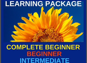 Your French Learning Package - 4 Levels
