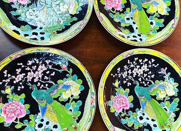 Plates (6)
