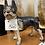 Thumbnail: Antique Boston terrier doorstop
