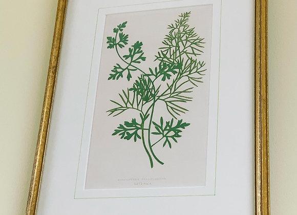 Botanical Prints (2)