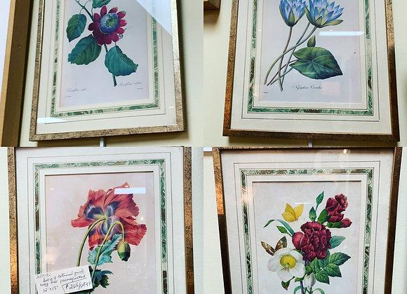 4 botanical prints