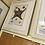 Thumbnail: 3 lithographs STARFISH set