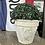 Thumbnail: Outdoor Flower Pot