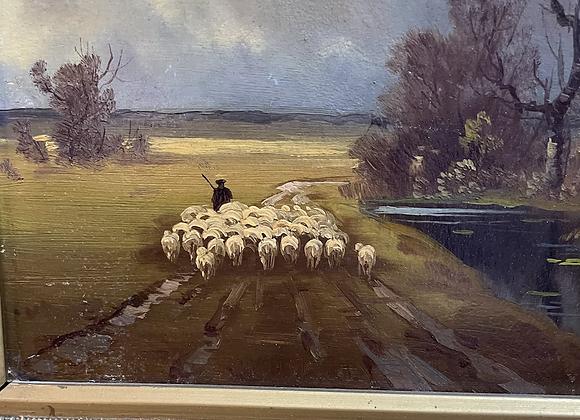 Original oil sheep