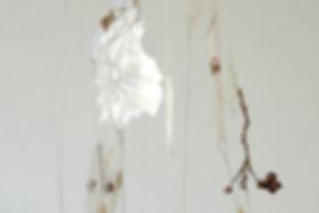 marta armengol