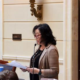 Senator Iwamoto Passes Domestic Violence Amendments on Senate Floor