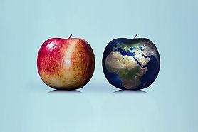pianeta cibo.jpg