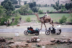 42.Two bikes & Camel - Rajasthan