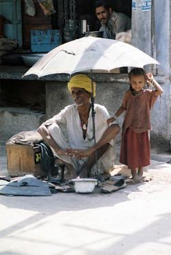 38. Rajasthan