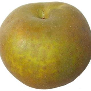 Apples, russet - Each / Kg