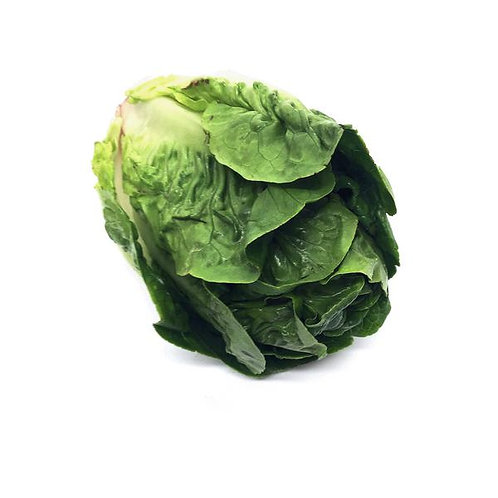 Lettuce, Little Gem - Each