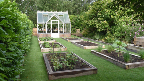 Grow your own food ... and then enjoy eating it