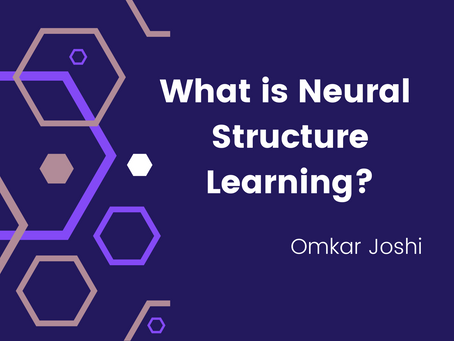 What is Neural Structure Learning?