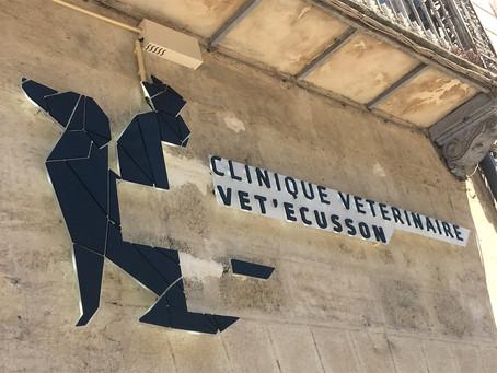 Enseigne lumineuse Clinique vétérinaire : Vet'Ecusson