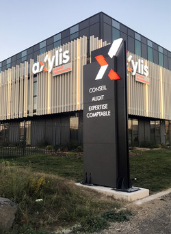 AXYLIS TOTEM Lumineux 1,5x4m