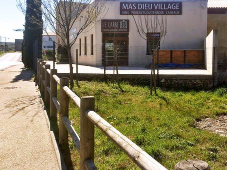 Enseignes lumineuses : Mas Dieu Village & Carré Bio