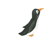pinguin3_edited_edited.png