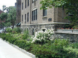 Side of waldo with flowers