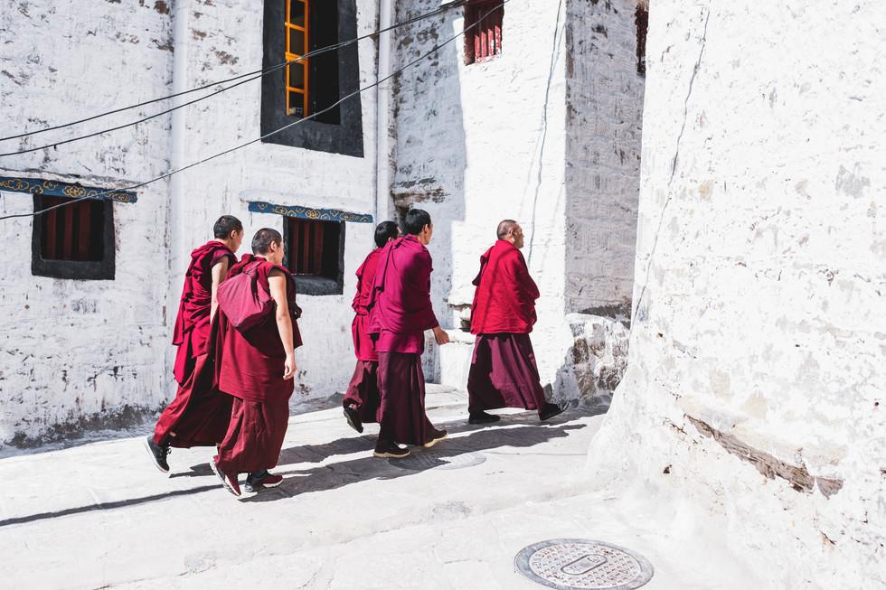 tibet_-162401.jpg