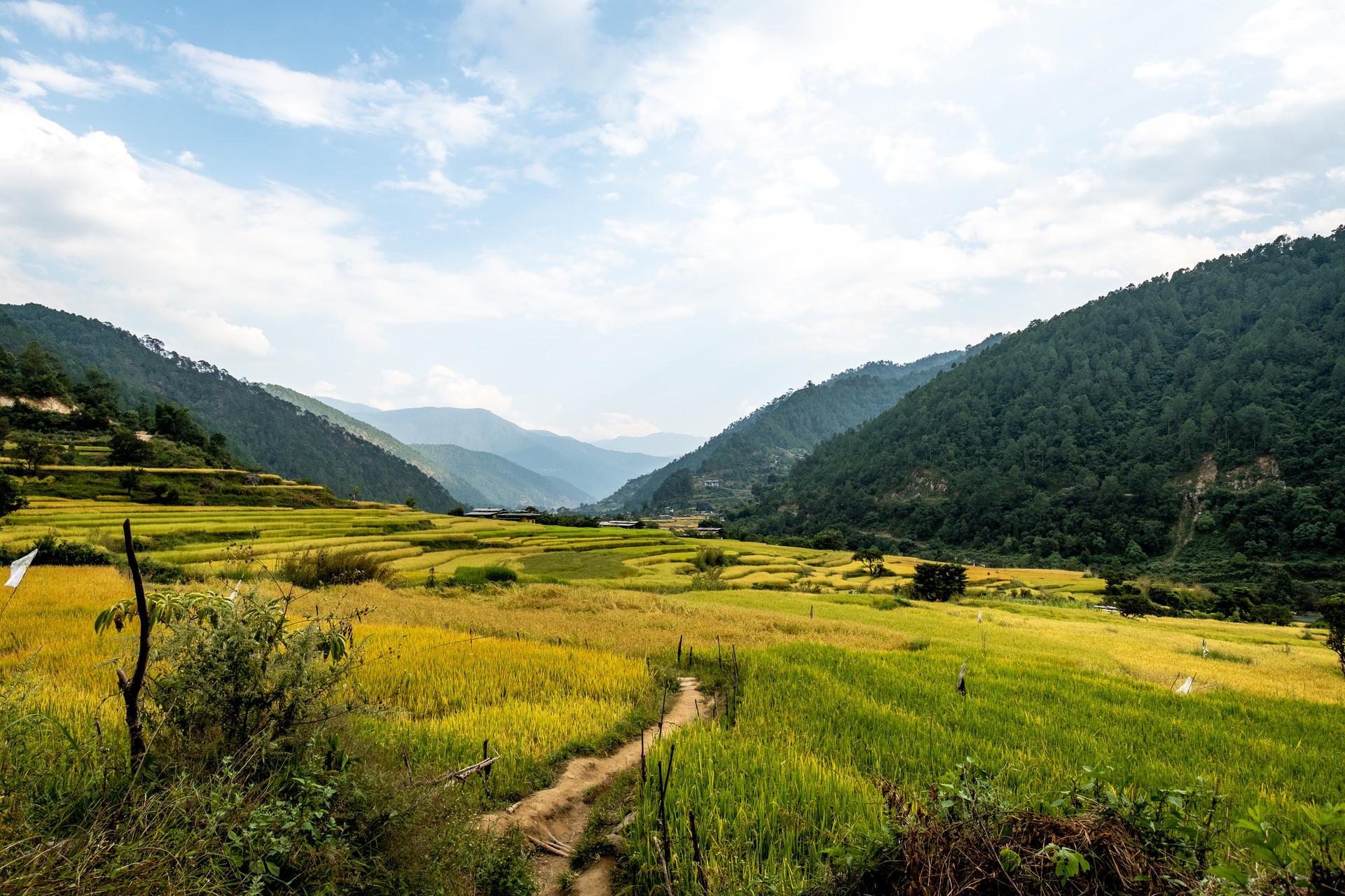 bhutan-163592.jpg
