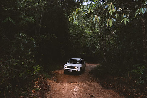 jeep-3427.jpg