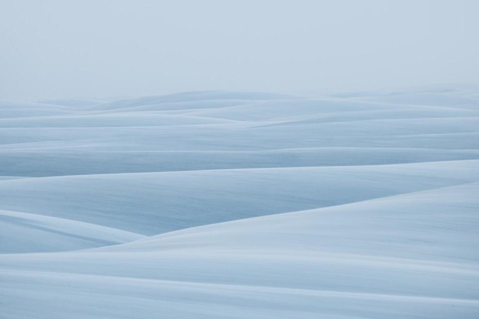 White World.jpg