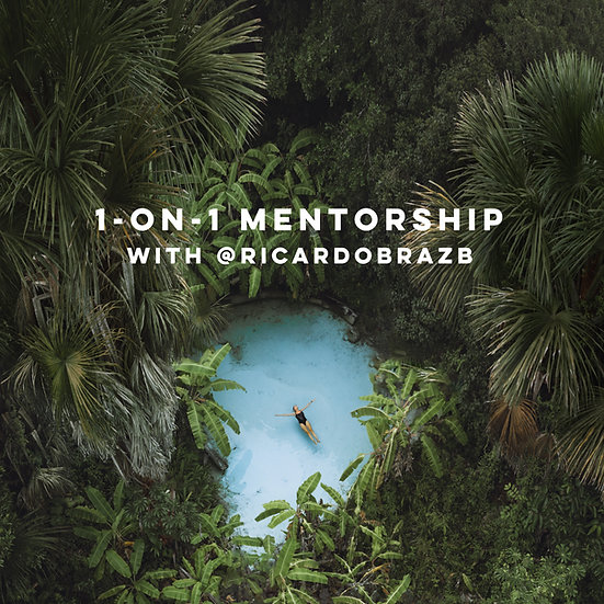 1-on-1 Mentorship