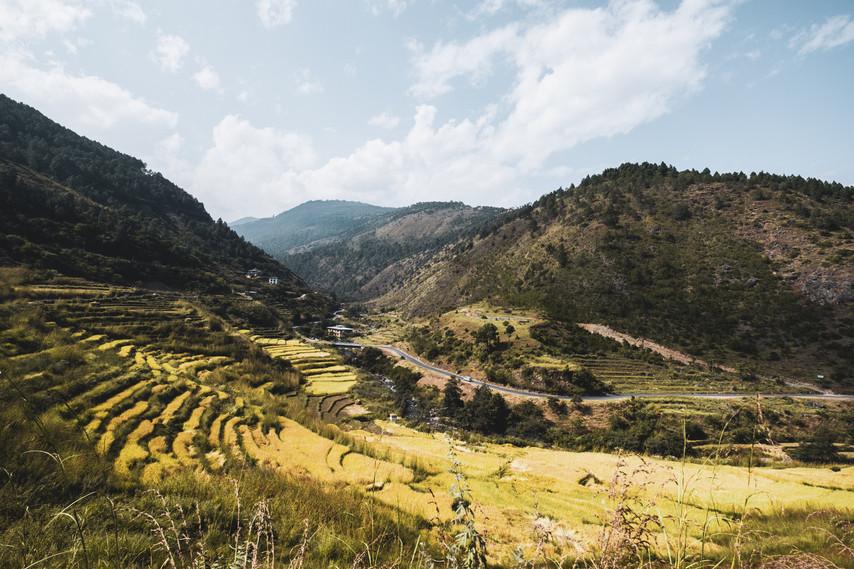 bhutan-163124.jpg