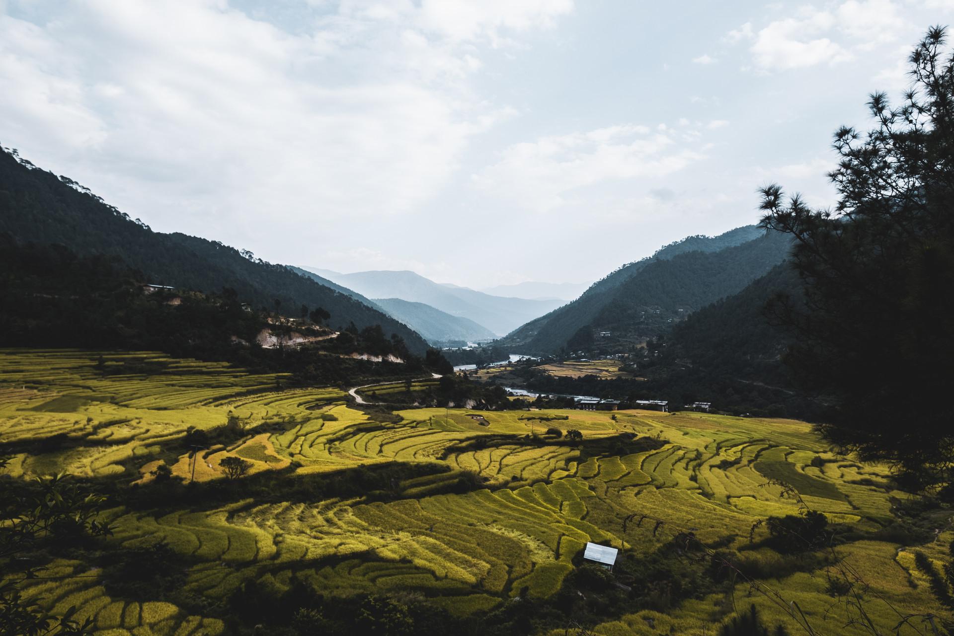 bhutan-163608.jpg