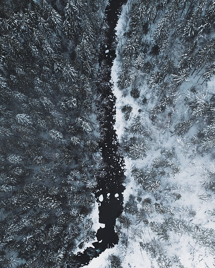 Vance Creek