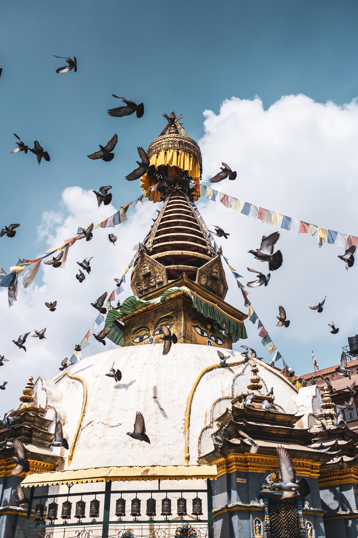 nepal_port-119396.jpg