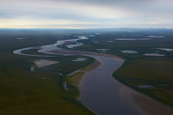 The Anadyr lowland, the river Kanchalan