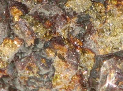 Метеорит Омолон