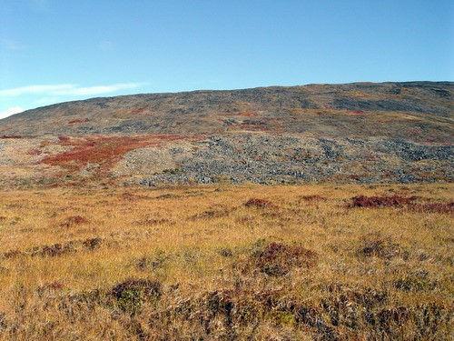 Tundra of the Chaun valley