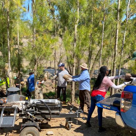 Bushfire relief work