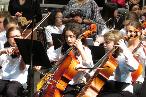 Elementary Intermediate Strings All-County DVD or Blu-ray