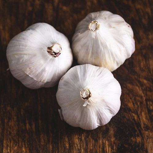 Garlic - x 3 Bulbs