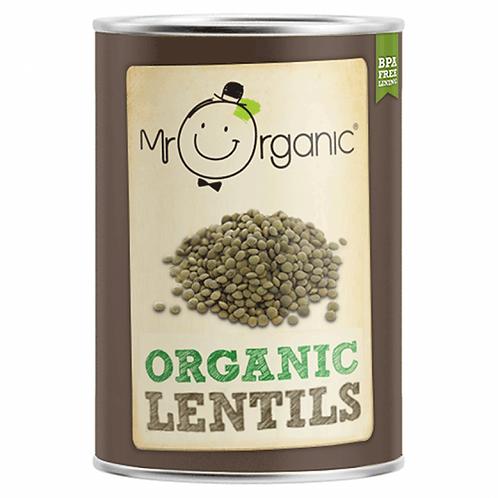 Organic Lentils - Green - 400g