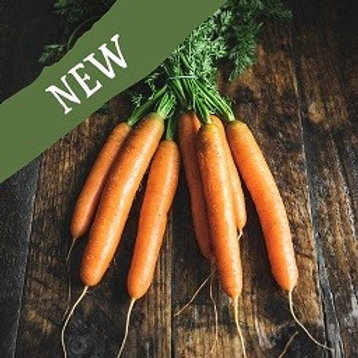 Carrots - Bunched 500G