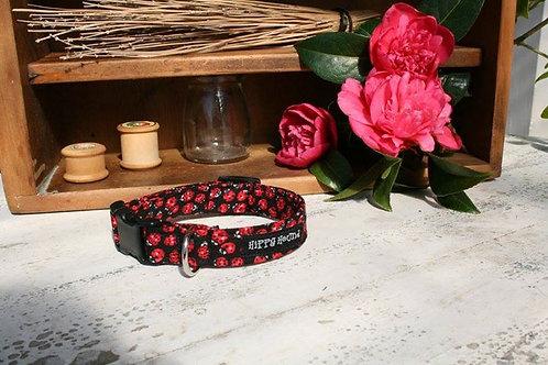 Black & red ladybirds collar