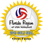 Citrus Fusion Volleyball Club Gold Seal